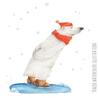 シロクマは雪の中でスケート