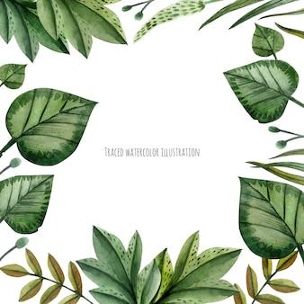 野生植物の水彩画の花輪