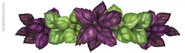 紫と緑のバジルガーランド
