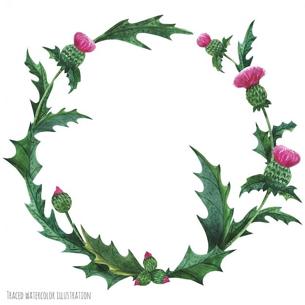 装飾のためのアザミの花輪