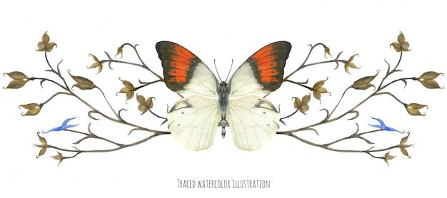 蝶ヘボモイアと植物のビネット