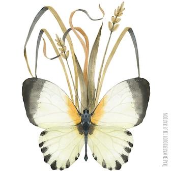 蝶と植物のブートニア組成