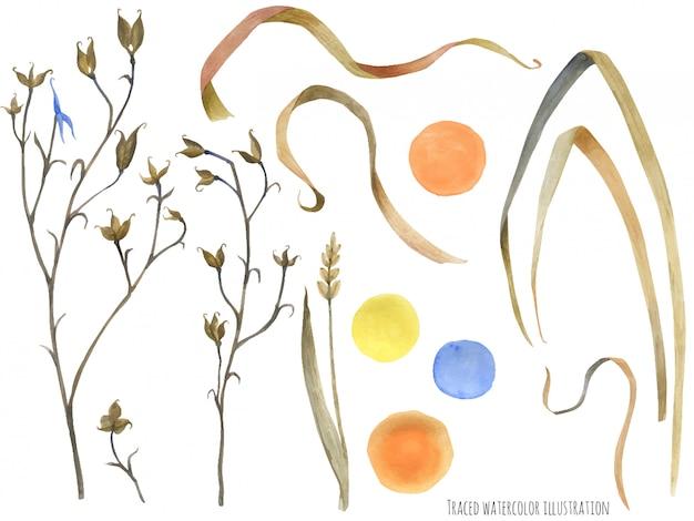草原の野生植物と太陽