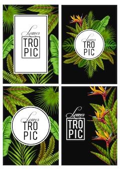 ベクトルセットエキゾチックな熱帯の葉の招待状