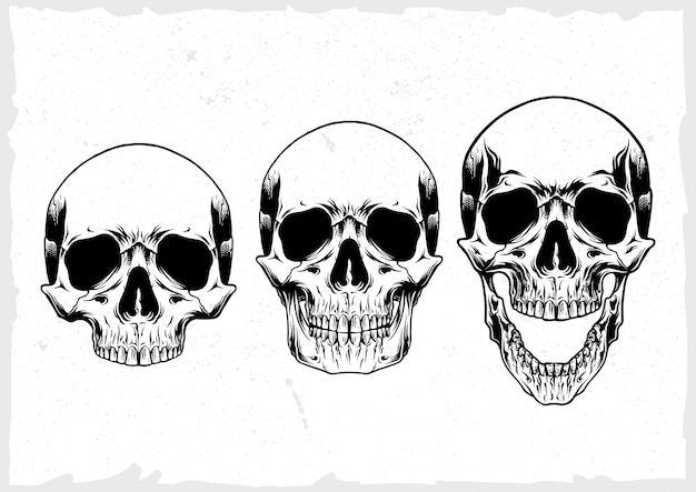 Набор векторных череп