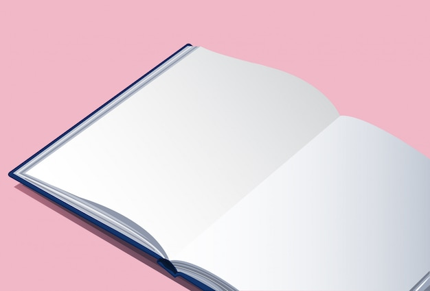 Пустая книга