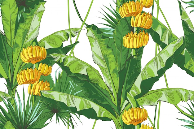 Вектор тропические бананы пальмы текстурные бесшовные модели.