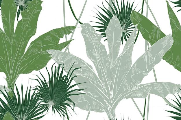 熱帯バナナの葉フルーツテクスチャのシームレスパターン。