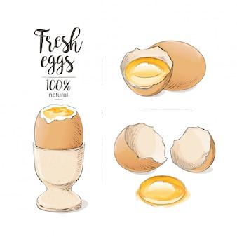ひびの入った卵