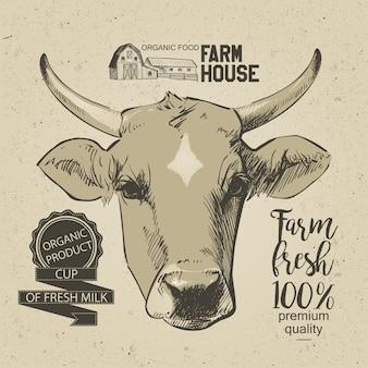 牛の頭手はグラフィックスタイルで描かれました。ビンテージベクトル彫刻イラスト