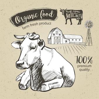 牛は牧草地の農場で横になっています。ビンテージグラフィック