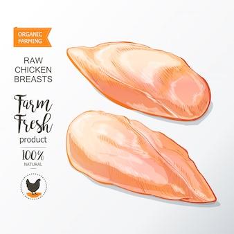 鶏の胸肉ベクトル