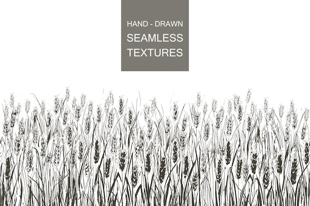 小麦のベクターのシームレスなパターンフィールド。田舎の手描き彫刻イラスト