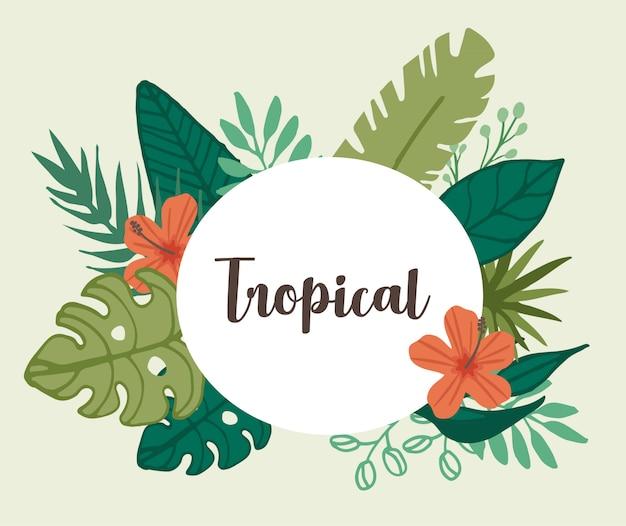 熱帯の花と熱帯の葉の要素