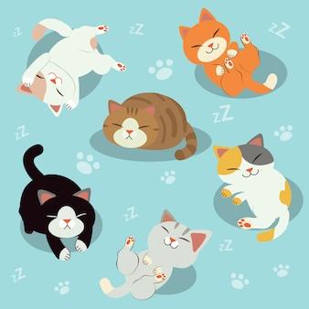 かわいい猫のグループ。眠そうな猫猫がリラックス。リラックスタイム。