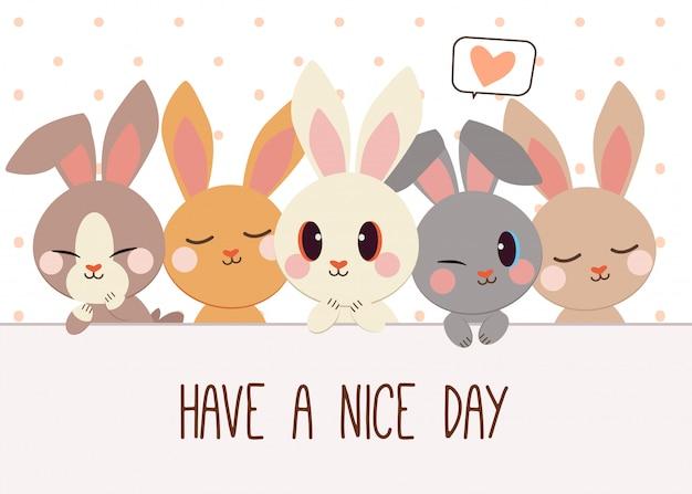 Набор символов мультфильма милый кролик.