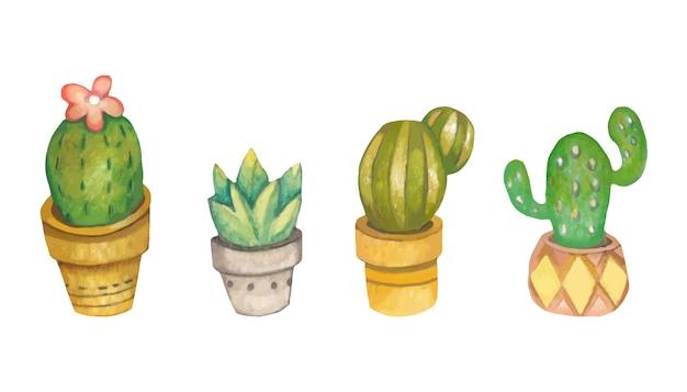 白い背景の上の植木鉢にサボテンのコレクション。