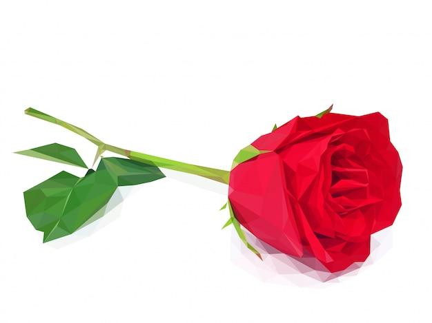 Красная роза многоугольника