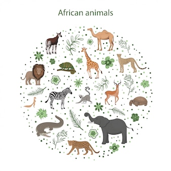 葉、花、円のスポットを持つ漫画アフリカ動物のセット。オカピ、インパラ、ラクダ、ゼウス、ライオン、カメレオン、シマウマ、キリンキツネザルチータークロコダイルヒョウゾウガメ