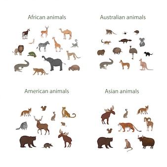 漫画のアフリカ、アメリカ、アジア、オーストラリアの動物のセット。オカピ、インパラ、ライオン、カメレオン、シマウマ、キツネザルジャガーアルマジロ鹿アライグマキツネエキドナリスうさぎコアラワニエルク