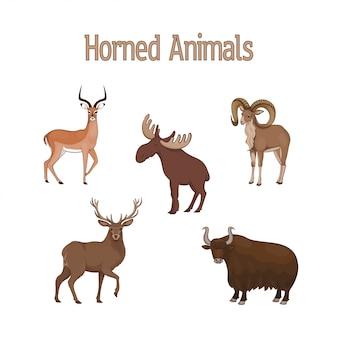 漫画かわいい角のある動物のセットです。インパラ、ウリアル、シカ、ヤク、ヘラジカ