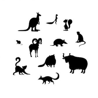 動物のシルエットのセットです。カンガルー、ゼロ、リス、ハタネズミ、ウリアル、アルマジロ、サル、キツネザル、アライグマ、ヤク、ヌンバット