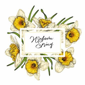 色ベクトル水仙。手描き春花バナー。