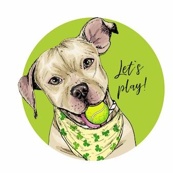 テニスボールとピット・ブルテリア犬のベクトルの肖像。夏のイラスト。