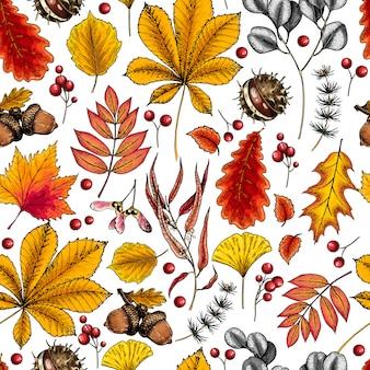 手描きの秋の葉。ツリーの葉のシームレスなパターンベクトル。