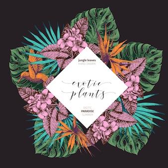 ベクター手描きの熱帯植物のポスター