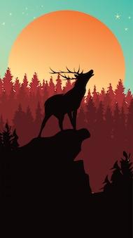 電話の追跡のための松林の背景で野生の鹿