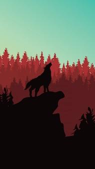 電話追跡のための松林の背景の野生のオオカミ