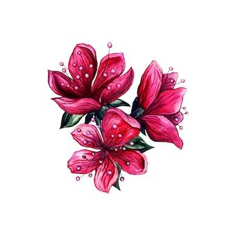 Розовая цветочная акварель, цветение японской сливы.