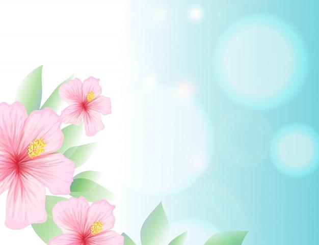 春と夏の水色の空とハイビスカス