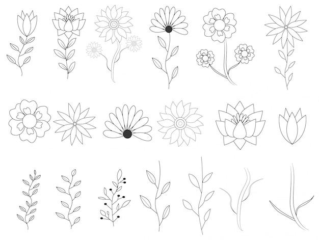 手描きの葉コレクションと花の要素