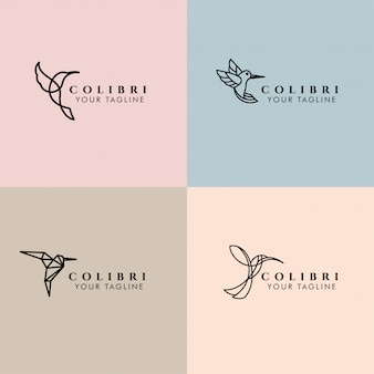 Колибри редактируемый монолитный логотип шаблон