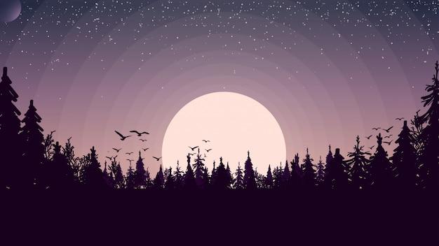 松林の夕日