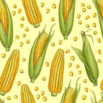 トウモロコシのイラストとシームレスなパターンをベクトル。トウモロコシの穂軸と野菜のパターン