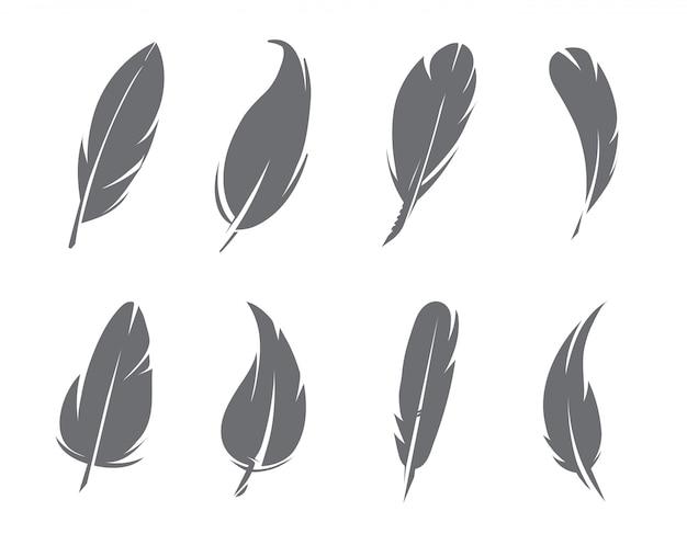 モノクロの羽の分離