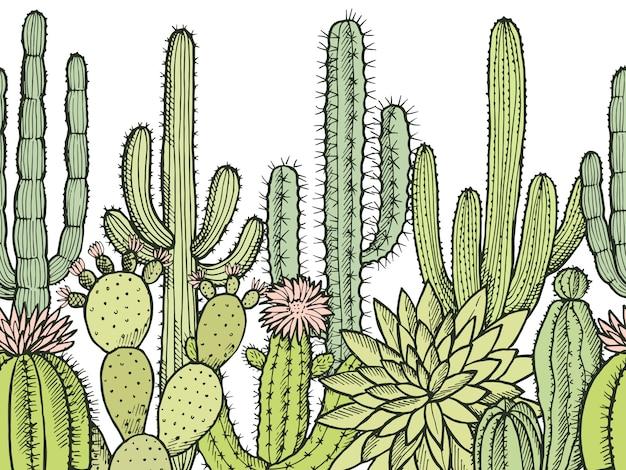 Горизонтальный бесшовный узор с дикими кактусами