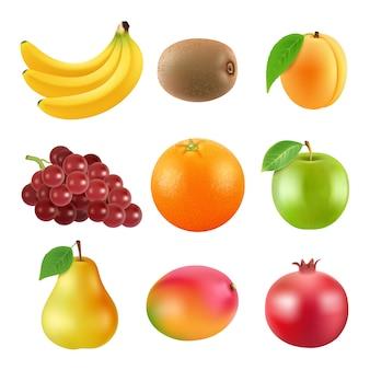 果物のさまざまなイラスト。現実的なベクトル画像分離