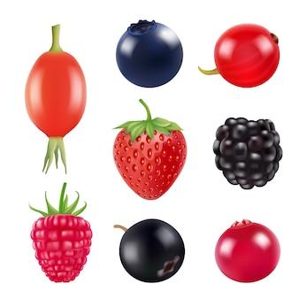 果実のセット。新鮮なフルーツとベリーのリアルな写真の分離