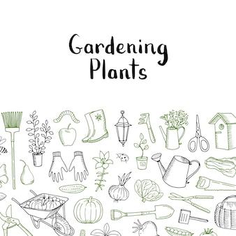 園芸と植物のスケッチ。園芸のベクトルの背景