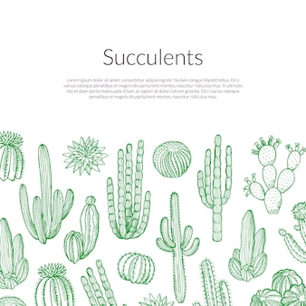 手描きの野生のサボテンの植物イラスト
