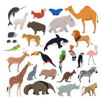 野生のかわいい動物入りの大きなベクトル