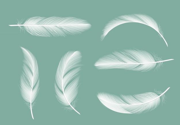 羽のコレクション。透明で分離されたガチョウの現実的な写真の毛皮のような飛行