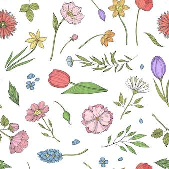 手描きの花のパターンやイラスト