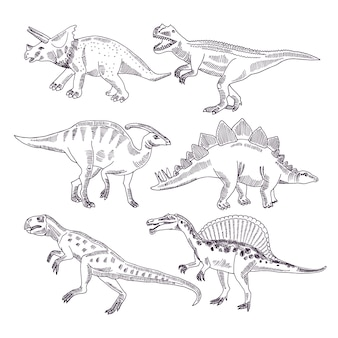 Дикая жизнь с динозаврами. набор рисованной иллюстрации т рекс и других типов дино