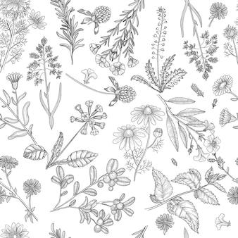 ハーブのパターン。薬用植物の花とハーブの自然のシームレスな背景を抽出します