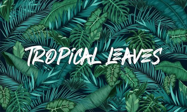 Тропические листья леса фон